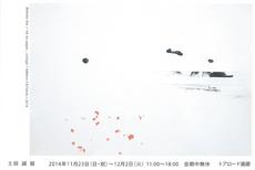 14-11-11a.jpg